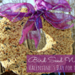 Bird Seed Wreath – Valentine's Day for the Birds