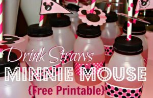 Minnie Mouse Drink Flags {Free Printable}