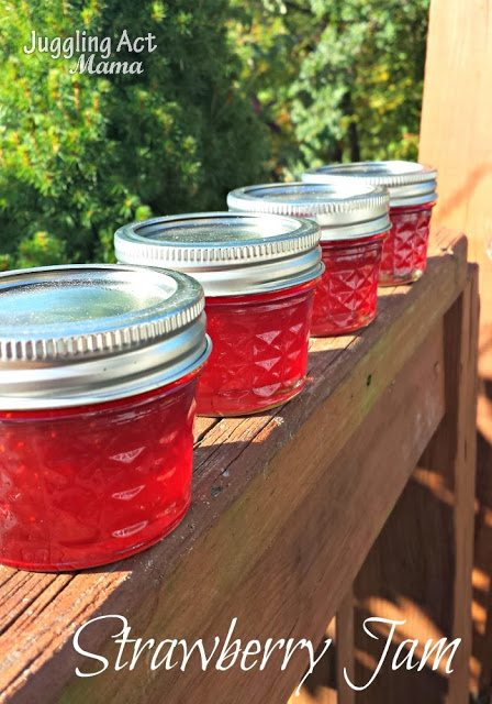 Strawberry Lime Jame from Juggling Act Mama as seen on Mom's Test Kitchen