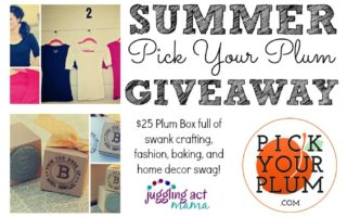 Summer Pick Your Plum Giveaway at Juggling Act Mama