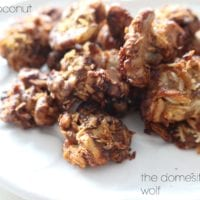 vanilla coconut walnuts from the domesticated wolf