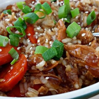 Slow Cooker Honey Chicken and #SlowCookerMeals Giveaway