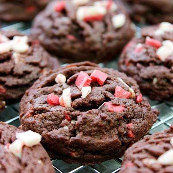 Holiday Chocolate and Peppermint Cookies