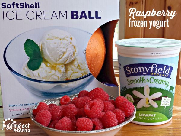 Homemade Raspberry Frozen Yogurt with Stonyfield and YayLabs