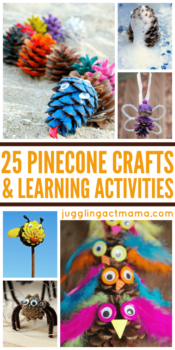 25 Pinecone Crafts and Learning Activities for Kids