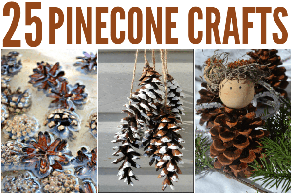 25 Pinecone Crafts for Kids