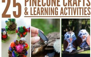 25 Pinecone Crafts and Learning Activities