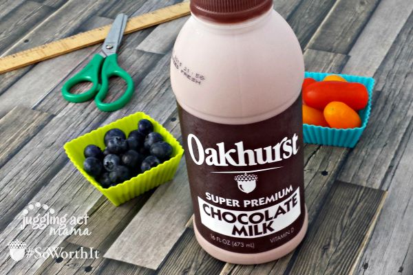 Oakhurst Milk is a healthy addition to any lunchbox