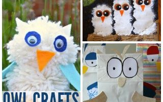 12 Wintry Owl Crafts