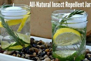 feature All-Natural Insect Repellent Jars