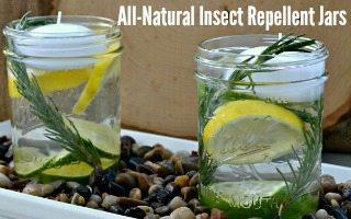 DIY Natural Insect Repellent Jars