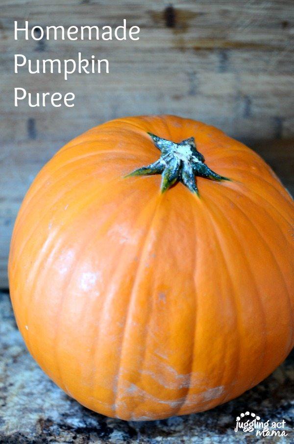 homemade-pumpkin-puree-600900