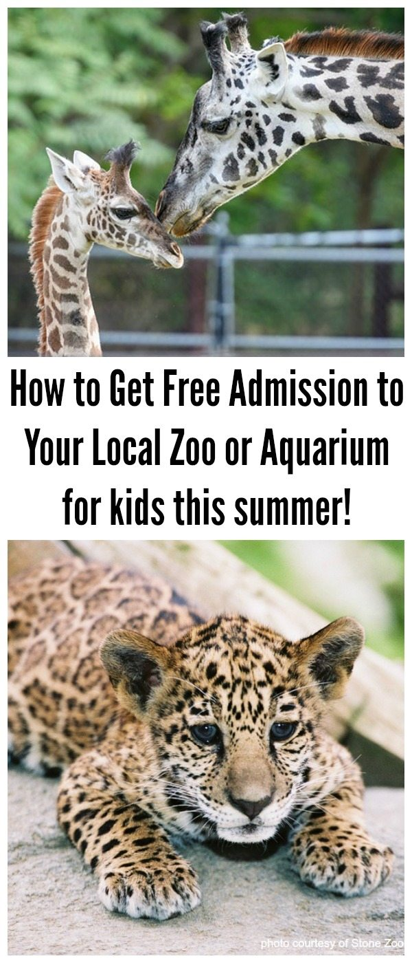 How to Get Free Admission to Your Local Zoo or Aquarium #ad #StonyfieldBlogger #AZA