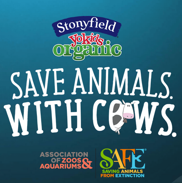 Save Animals with Cows #ad #StonyfieldBlogger #AZA