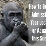 How to Get Free Admission to Your Local Zoo or Aquarium