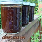 Canning Your Own Sweet and Spicy Barbeque Sauce