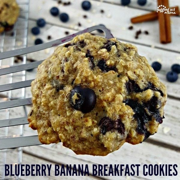 Chewy Blueberry Banana Breakfast Cookies are easy, healthy and delicious! #IC #ad #CalorieCountdown