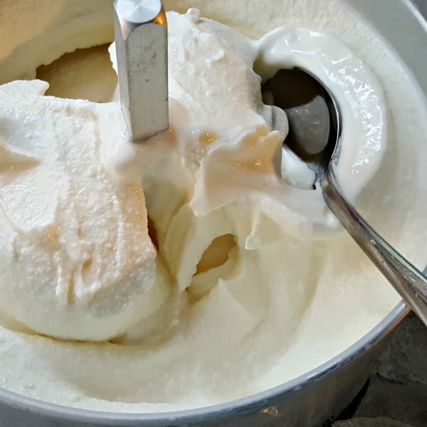 Easy Homemade Ice Cream - just churned