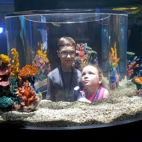 Ethan and Olivia at Niagara Aquarium #ad #AquariumOfNiagara