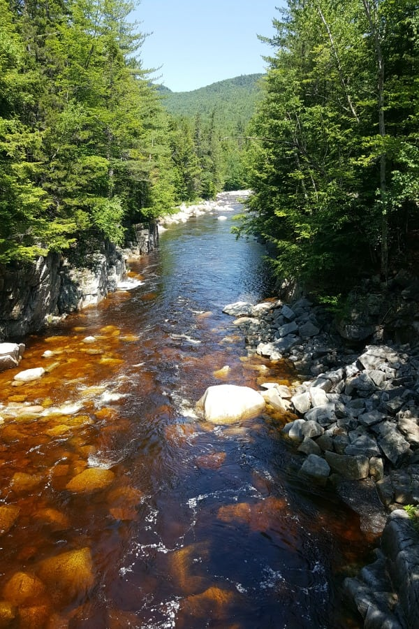 Rocky Gorge - White Mountains National Park