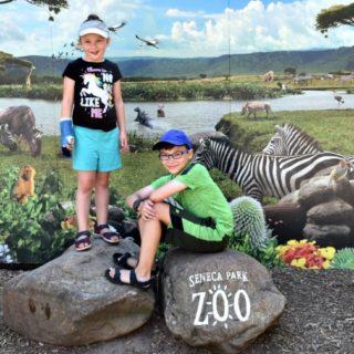 Seneca Park Zoo 2018 - Rochester NY