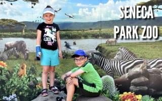 Rochester Zoo – Seneca Park Zoo