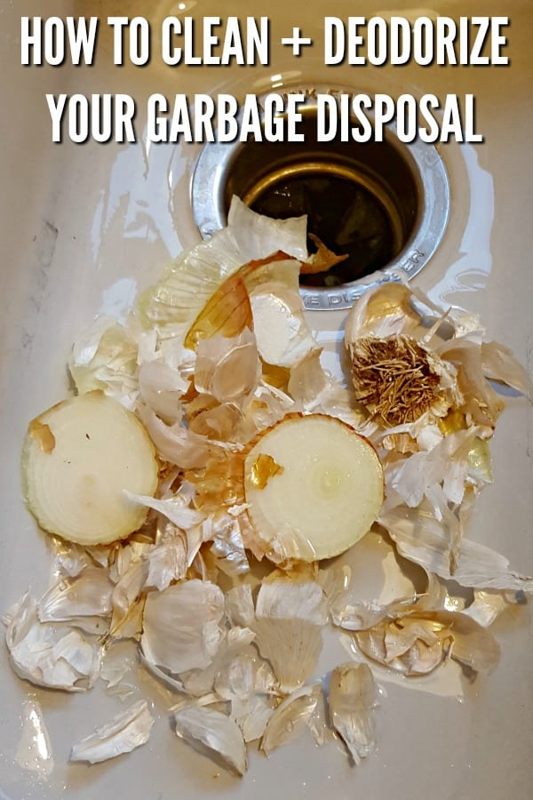 sink with onion and garlic pieces with a garbage disposal