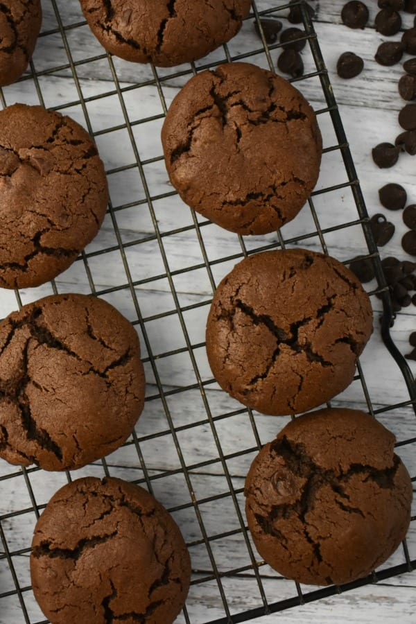caption: Chocolate lovers will got nuts for these Double Chocolate Chip Cookies!