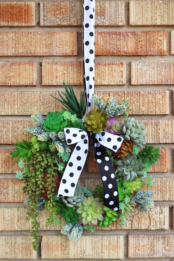 wreath with faux succulent plants hangs from a black an whitte polka dot ribbon against a brick wall.