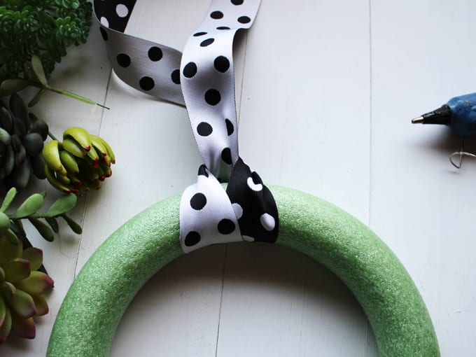 Steps for How to Make a Succulent Wreath, image includes wreath form and black and white polka dot ribbon.