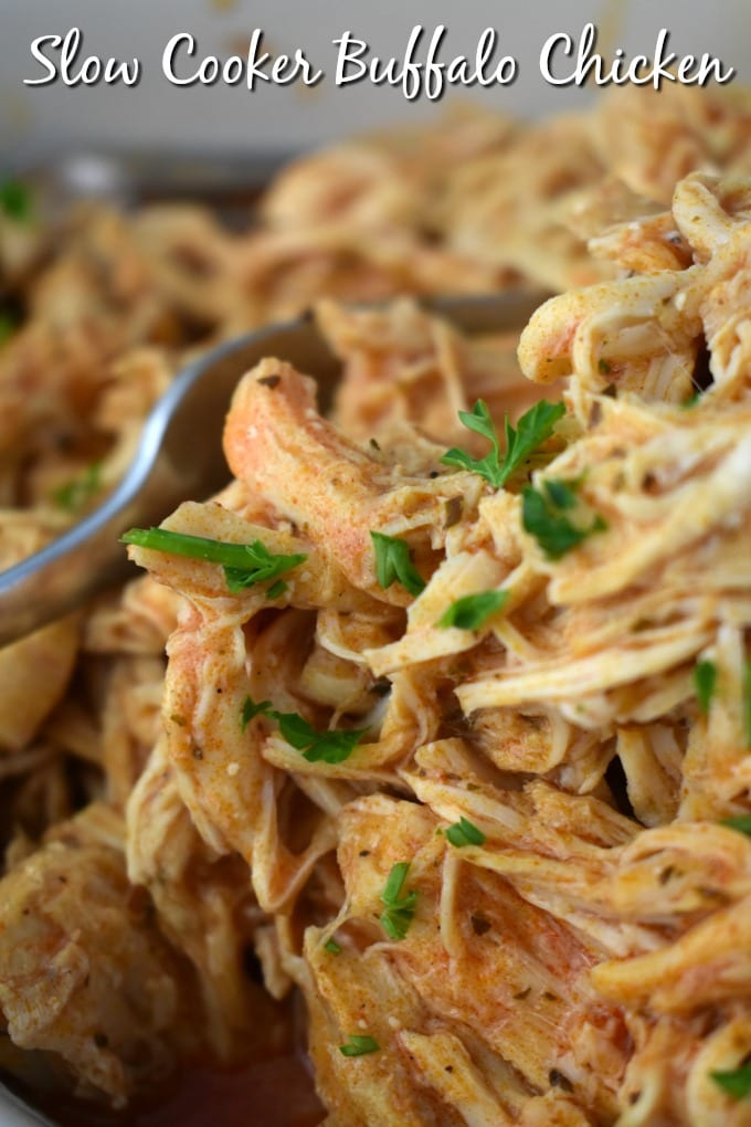 Close up of slow cooked buffalo chicken shredded and sprinkled with parsley