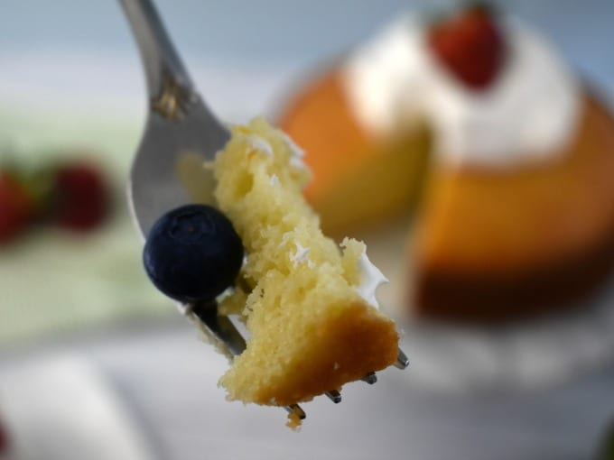 A fork with a bite of Yogurt Cake and a single blueberry in the foreground with a Yogurt Cake topped with whipped cream and a strawberry in the background.