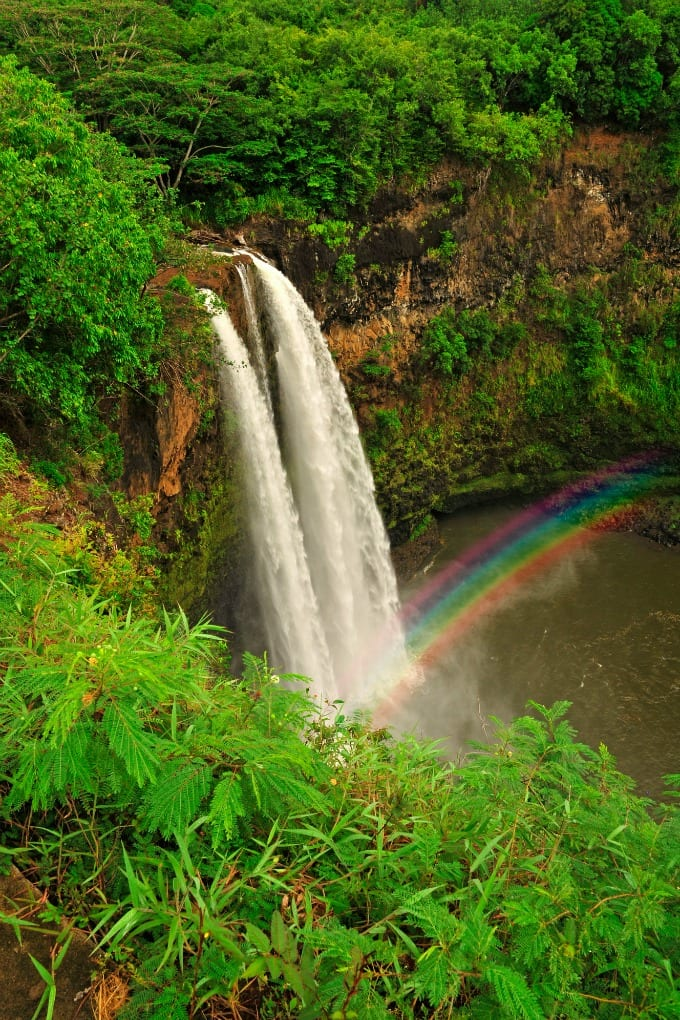 Waterfalls drop in a water pool in a lush green forest, with a rainbow rising from the mist