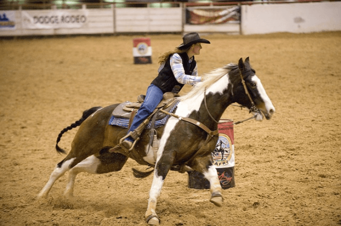 Female Cowgirl riding a paint pony in a rodeo