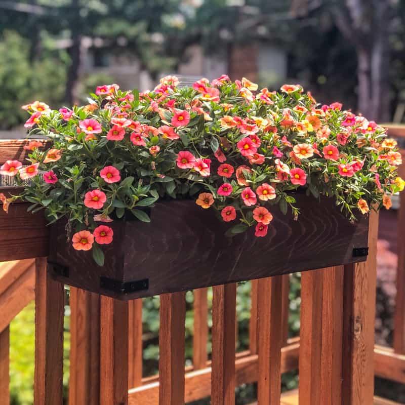 Close up image of a diy deck railing planter box.