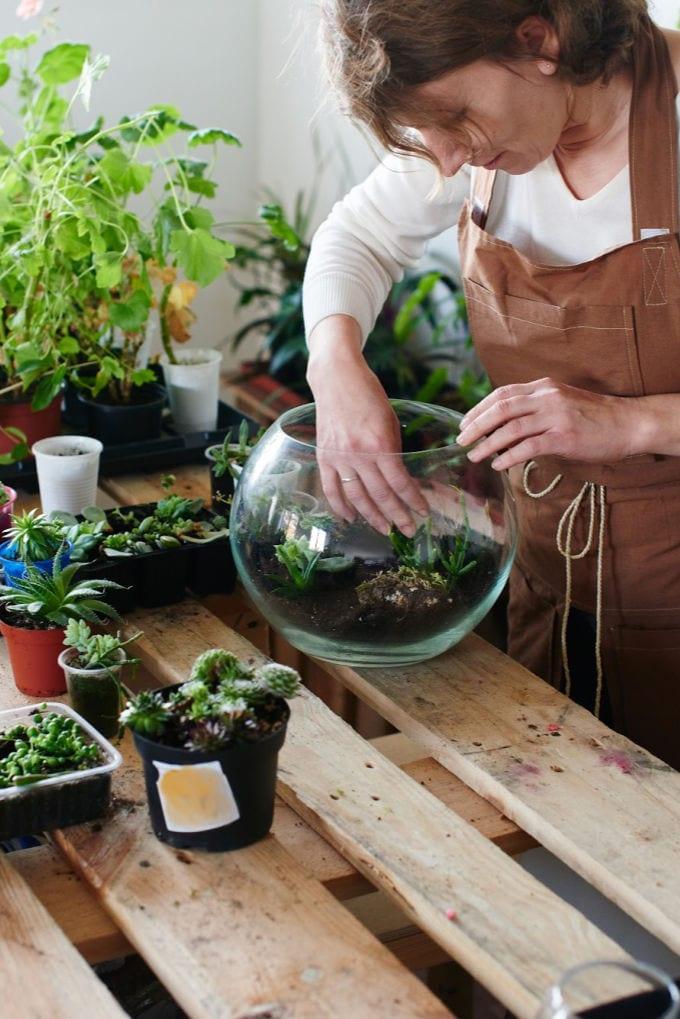 How to Make a Succulent Terrarium - woman planting succulents