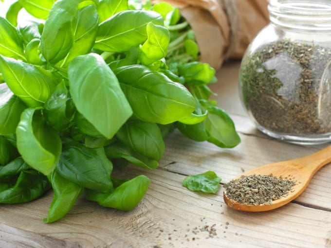 Fresh basil leaves sitting next to a wooden spoon with dried basil.