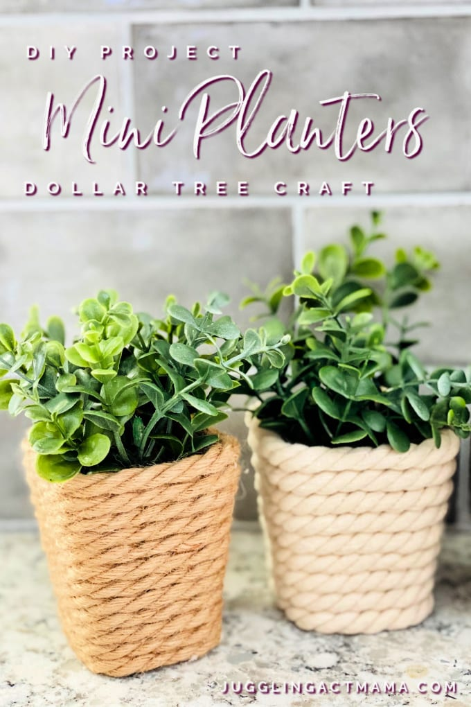 Mini DIY Dollar Tree Planter - close up of mini plastic containers wrapped with cotton rope and jute rope. Faux eucalyptus is in each of the pots.