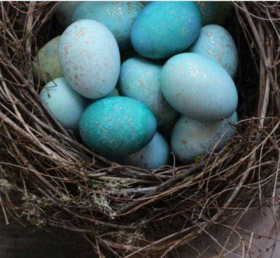 DIY Dyed Robin's Eggs from Honestly Yum