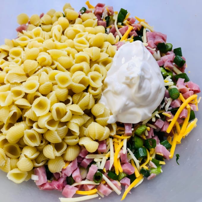 Top down view of pasta, ham, cheese, green onions and mayonnaise in a dish. Not yet mixed.